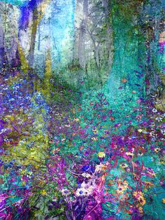 Enchanted Forest - Manipulated Photography by Ann Powell
