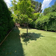 Astroturf, Gardens