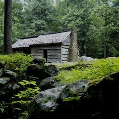 You'll find so many old homesteads here in the Smokies