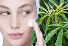 Is CANNABIS the secret to acne-free skin? Extra ingredient that promises to soothe skin conditions - EVOKE. Body Bars, Cannabis Oil, Oils For Skin, Flawless Skin, Beauty Industry, Hemp Oil, Acne Treatment, Good Skin, The Balm