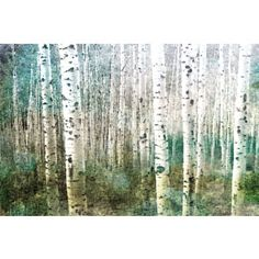 Parvez Taj 'Aspen Green' Canvas Print | Overstock.com Shopping - The Best Prices on Canvas Art   Overstock.com