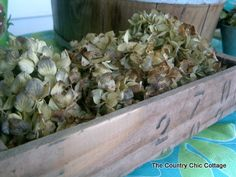 Thrifty Finds -- Wooden Box and Dried Hydrangeas