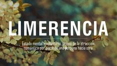 limerencia The Words, Weird Words, More Than Words, Cool Words, Pretty Words, Beautiful Words, Words Quotes, Love Quotes, Spanish Words