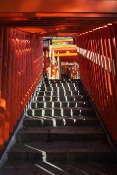 Osaka, Voyage Nepal, Santiago, The Visitors, Sunrise