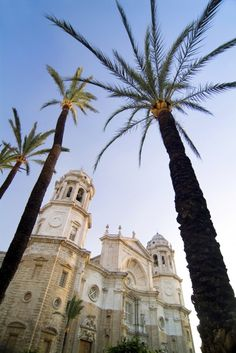 A city to tour and experience Spain Travel, Us Travel, Places To Travel, Andalusia Spain, Andalucia, Granada, Msc Cruises, Cruise Holidays, Cruise Destinations