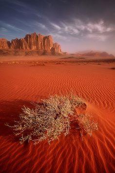 Sunrise over the desert of Wadi Rum, Jordan, by Jarrod Castaing