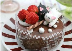 고양이 미니 라즈베리 초콜릿 케이크