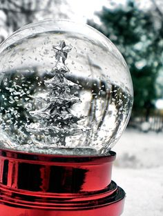 Silver winter tree snow globe by Lindsey Mae | flickr