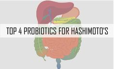 """THE FOUR BEST PROBIOTICS FOR HASHIMOTO'S 2/14/2015 43 Comments   The Four Best Probiotics for Hashimoto's  When I was first searching for a healing plan for Hashimoto's, I learned about the role of the gut in autoimmune disorders.   According to research from Dr. Fasano and colleagues, every person with an autoimmune disorder has something called intestinal permeability, also knows as a """"leaky gut"""".   This made a lot of sense to me because I had many of the symptoms of intestinal permeabili"""