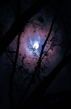 purple and blue midnight sky / mystical moonlight Beautiful Moon, Beautiful World, Sun Moon, Stars And Moon, Shoot The Moon, Midnight Garden, Moon Pictures, Moon Pics, Moon Magic