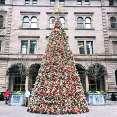 Everything you need to do in NYC this Christmas!