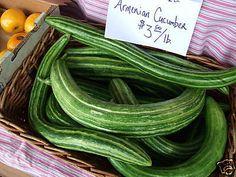 PEPINO MELON SERPIENTE cucumber snake 50 Semillas Seeds