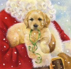 Lisa Alderson - Puppy santa.jpg