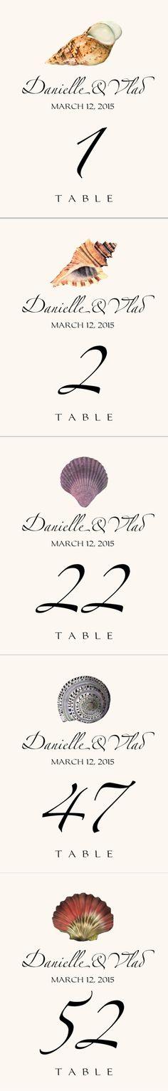 Seashell Assortment 02 :: Weddings :: Table Numbers