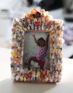 Cheryl's Shells: Tiny's Coquina Frame