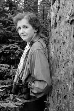 Rachel Louise Carson (1907 –1964) was an American marine biologist and ecologist whose book Silent Spring and other writings are credited with advancing the global environmental movement, she turned her attention to conservation, especially to some environmental problems that she believed were caused by synthetic pesticides. Although Silent Spring was met with fierce opposition by chemical companies, it spurred a reversal in national pesticide policy which led to a nationwide ban on DDT.