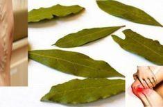 Dites adieu aux douleurs articulaires, aux migraines, aux varices, à l'acné, aux boutons et plus encore, grâce à ce remède à base de plantes! - Vie au quotidien