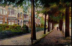 Veerallee 1920-1925 gezien naar het noorden bij de Emmastraat, dubbele rij bomen. Alle huizen hebben een flinke vlaggenstok aan hun erker.