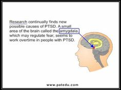 Post - Traumatic Stress Disorder ( PTSD )