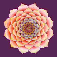 Oeuvre de Mandala Lotus inspiration cadeau pour la par mandalaway