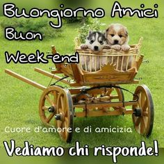 Buon week-end
