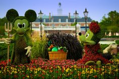 Mickey and Minnie Mouse #topiary