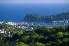How's that for a view?! Family-friendly site in a gorgeous setting near Teignmouth on the lovely south Devon coast