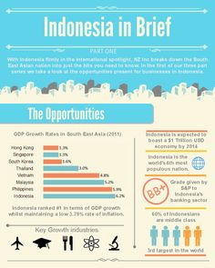 Indonesia in Brief infographic