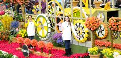 Tournament of Roses | Rose Parade - some day soon. Maybe 2015.