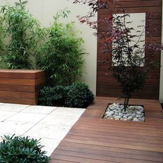 Good use of decking planks on ground and walls with interesting foliage plants.