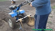 Первая посадка картошки мотоблоком Кентавр под диски без лопаты