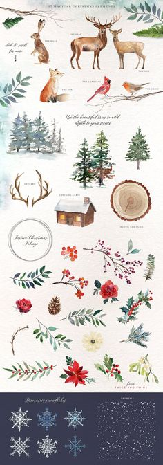 A Woodland Christmas Graphic Set by Twigs and Twine on @creativemarket Watercolor painting art for inspiration and new ideas. This illustration is perfect for cards, quotes, background, etsy shop decoration or wallpaper.