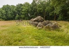 Dolmen D19 in the province of Drenthe in the Netherlands with a background of oak trees.  A dolmen or in Dutch a Hunebed is construction work from the new stone age