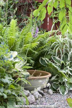 Trädgårdsflow Garden Cottage, Home And Garden, Natural Pond, Garden Inspiration, Garden Ideas, Garden Ornaments, Small Patio, Decoration, Gardening Tips