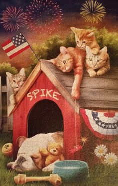 Fourth Of July Mischief by Thomas Wood Decoupage, Mundo Animal, Cross Paintings, Dog Art, Fourth Of July, Memorial Day, Fireworks, Animals And Pets, Cats And Kittens