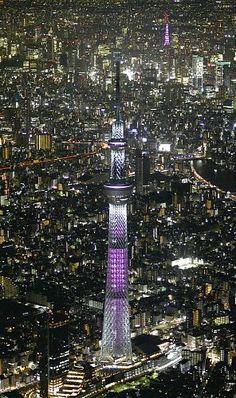 ピンク色にライトアップされた東京スカイツリー(右奥の東京タワーも)(1日夜、東京都墨田区で、読売ヘリから)=源幸正倫撮影