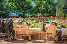 Parques de Orlando carrinho de criança