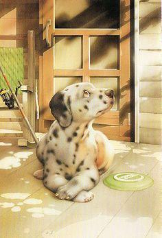 Muramatsu Dog 51 | Flickr - Photo Sharing!