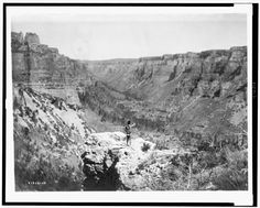 Rear view of Crow Indian, standing, overlooking Black Cañon - Curtis - 1905