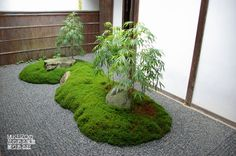 Japanese garden Kyoto 大原三千院