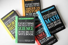 the Big Fat Notebook series: Like Cliff Notes for kids, only better