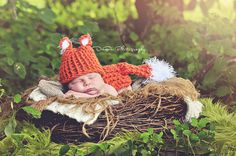 Newborn Knitted Fox Hat/Bottom Cover/ Photo Prop by pinkiebows, $22.00~~~this is a cute one & only $22!