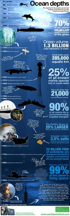 Awesome Infographic on Ocean Depth! fakten Awesome Infographic on Ocean Depth! The Ocean, Ocean Life, Ocean Ocean, Earth Science, Science And Nature, Science Facts, Fun Facts, Biology Facts, Crazy Facts