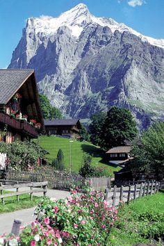 Picture of the Wetterhorn (3704m) taken the village of terrassenweg in the Bernese Oberland
