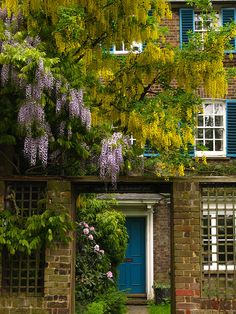 One Tree House, Hampstead