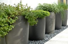 green{ing} up the side of the house.  Garden Planters | Design for the Garden: Large Planter Pots are perfect for Private ...