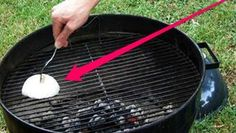 Do you want to clean your grill with vinegar? This article will help you learn how to clean BBQ grill grates with vinegar which is a powerful cleaning agent Barbecue Grill, Peanuts For Birds, Tesco Food, Edible Centerpieces, Portable Grill, Grilled Fruit, Clean Grill, Food Humor, Facon