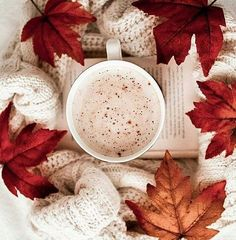 Best time of the year♡ - Book and Coffee Autumn Coffee, Autumn Cozy, Autumn Tea, Autumn Harvest, Hygge, Book And Coffee, Home Bild, Pause Café, Autumn Aesthetic