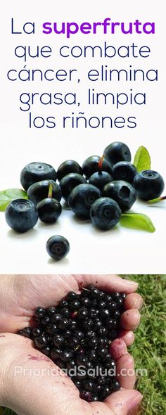Esta superfruta combate el cancer, elimina grasa, limpia los riñones. Healthy Tips, Healthy Snacks, Healthy Recipes, Fitness Nutrition, Health And Nutrition, Fruit Benefits, Detox Your Body, Natural Health, Smoothies