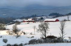 Picturesque Pastures in Snow - Washington County, NY (Grandma Moses country)